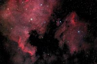 The North American and Pelican Nebulae