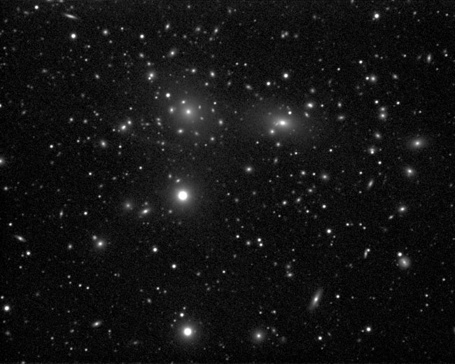 Galaxy Cluster in Coma Berenices